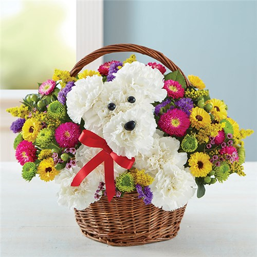 Homepage the flower market 1 800 flowers a dog able in a basket mightylinksfo